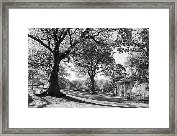 Autumn At Runnymede Uk Framed Print