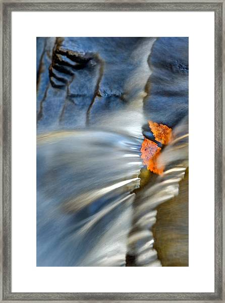 Autumn Color Caught In Time Framed Print