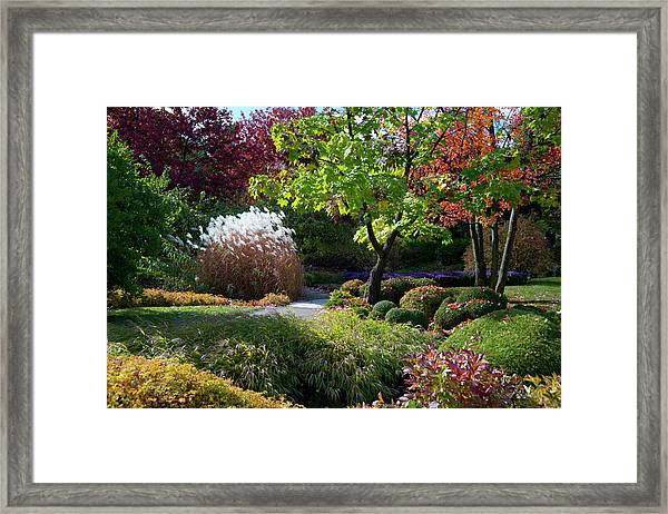 Autumn Foliage In The Montreal Framed Print by Ellen Rooney / Robertharding