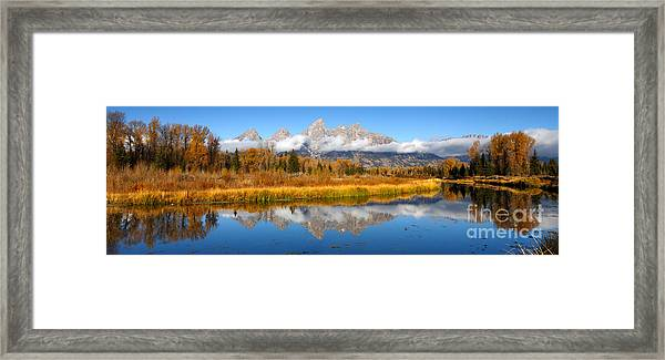 Autumns Calling Card Framed Print