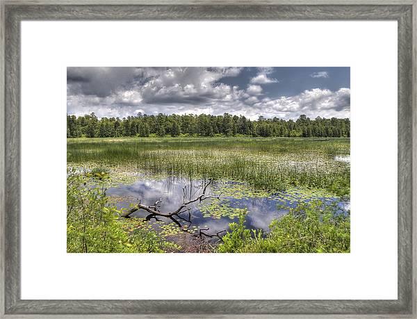 Batsto Lake In Spring Framed Print