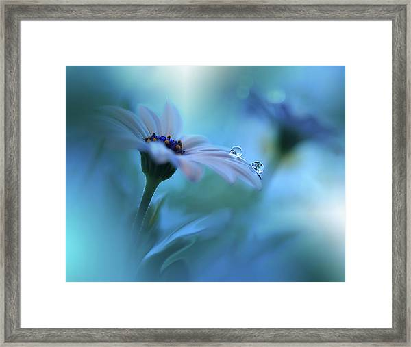 Beyond The Visible... Framed Print