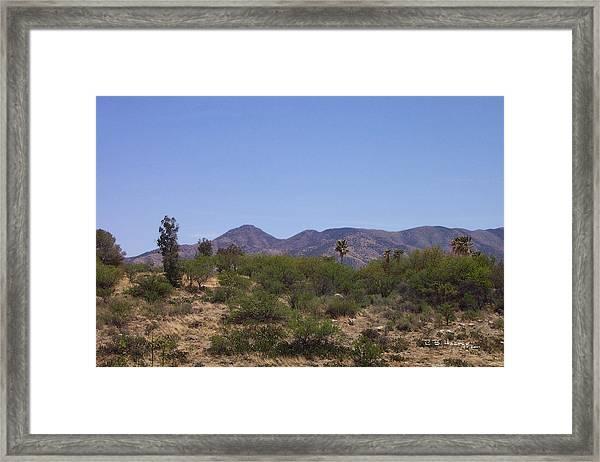 Biosphere View Framed Print