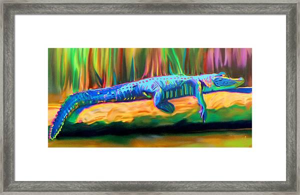 Blue Alligator Framed Print
