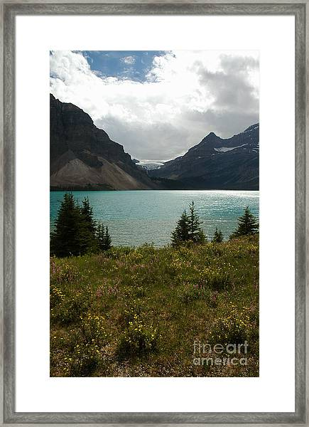 1010a Bow Lake Alberta Framed Print