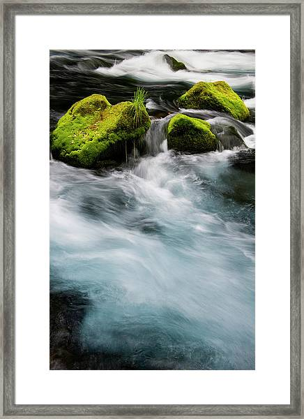 Chile South America Moss-covered Framed Print by Scott T. Smith