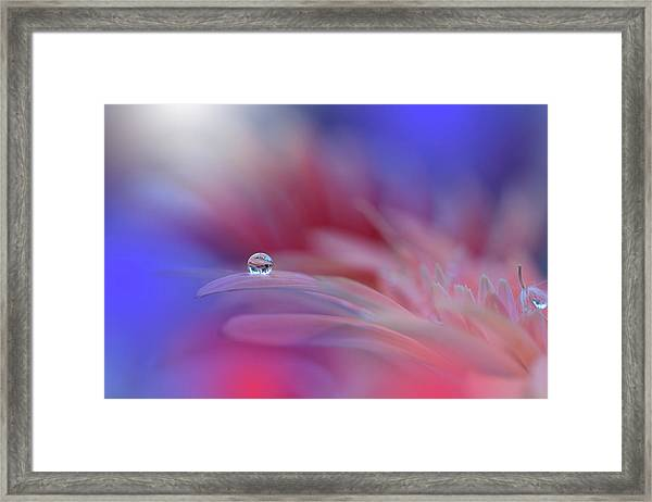 Colorful Explosion... Framed Print