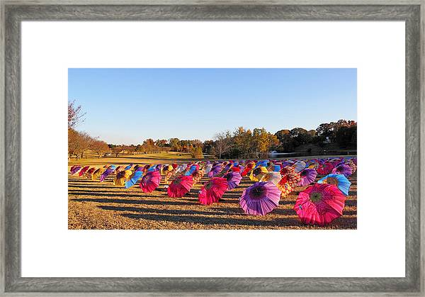 Colorful Umbrellas At The Park Framed Print