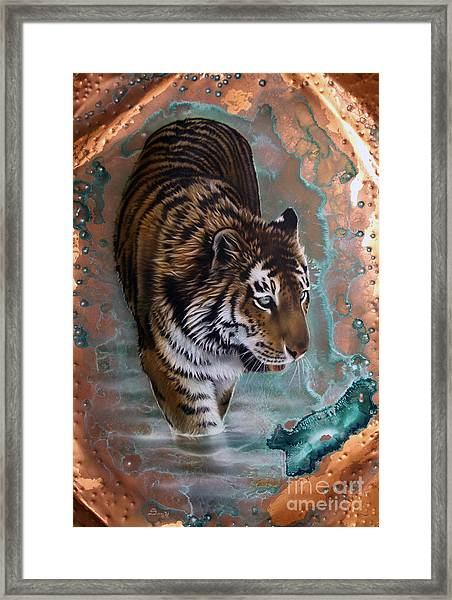 Copper Tiger I  Framed Print