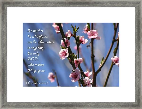 1 Corinthians 3 7 Framed Print