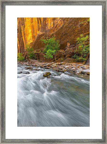 Cottonwood Alley Framed Print