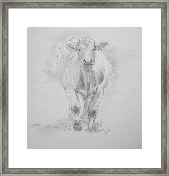 Cow Drawing Framed Print