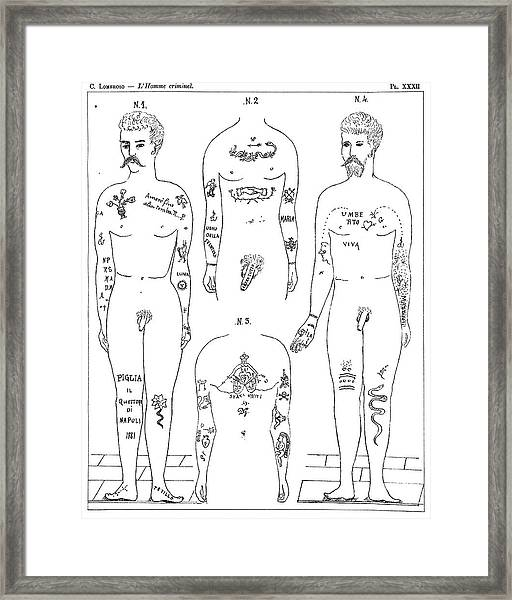 Criminal Tattoos Framed Print by Science Photo Library