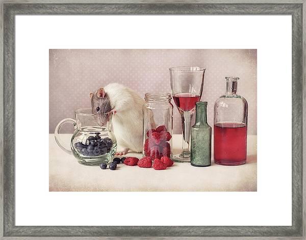 Curious Framed Print by Ellen Van Deelen