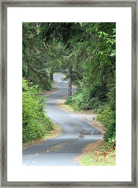Curves Into Leadbetter Point State Park II Framed Print