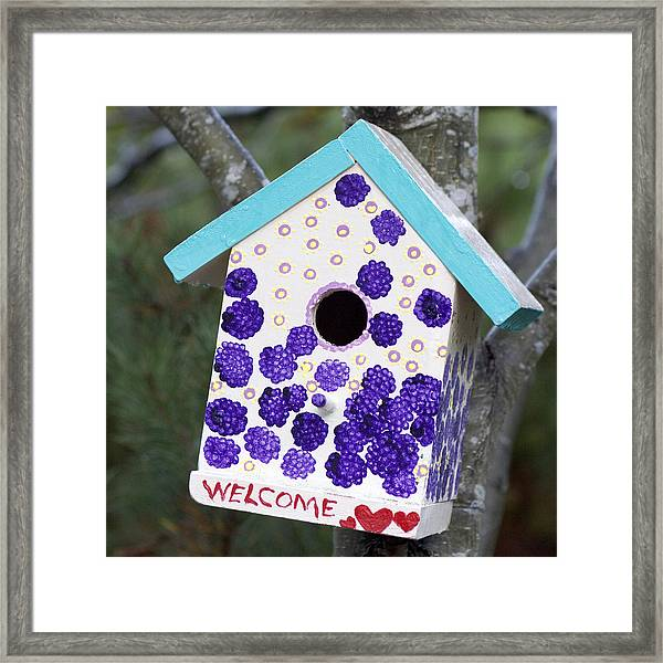 Cute Little Birdhouse Framed Print