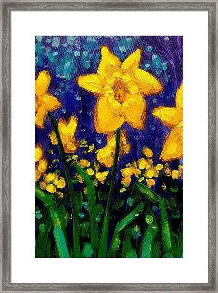 Dancing Daffodils Cropped  Framed Print
