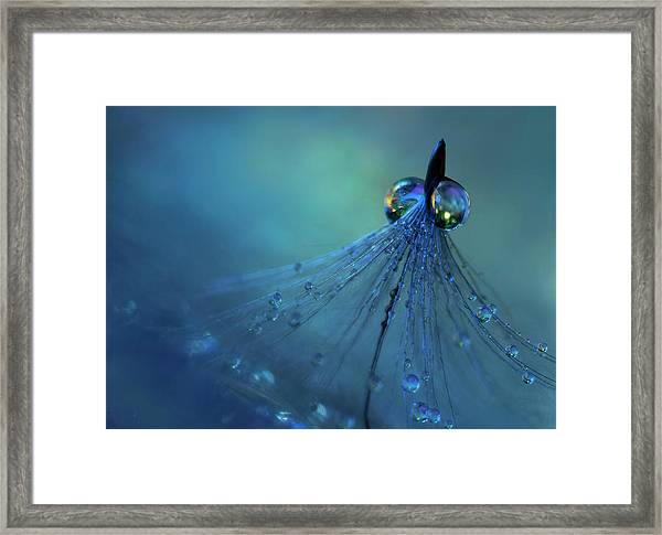 Dancing Into The Blue Night Framed Print