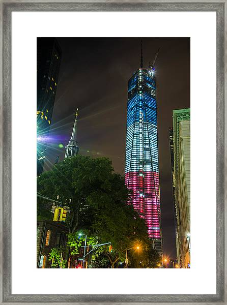Dressed For The 4th Of July Framed Print