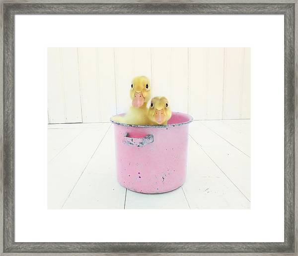 Duck Soup  Framed Print