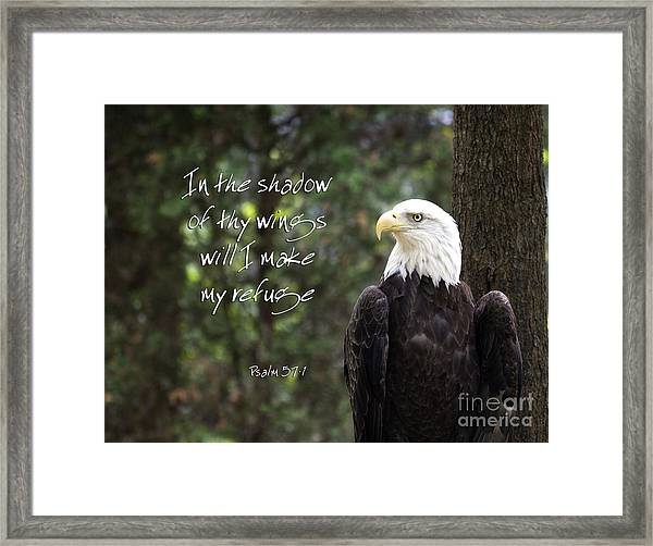 Eagle Scripture Framed Print