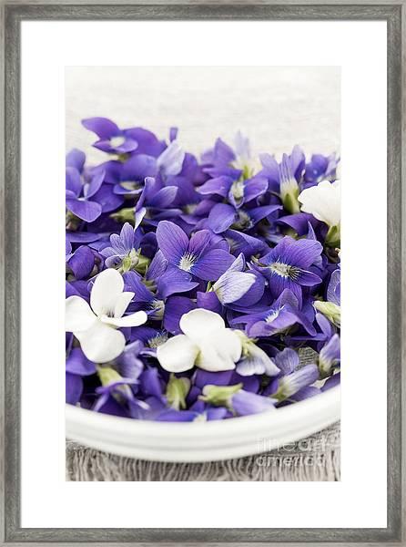 Edible Violets In Bowl Framed Print