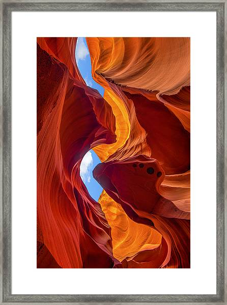 Framed Print featuring the photograph Enduring Beauty  by Dustin  LeFevre