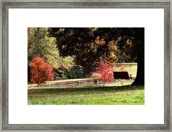 Fall Colors Framed Print by Jinx Farmer