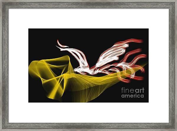 Fire Bird Framed Print