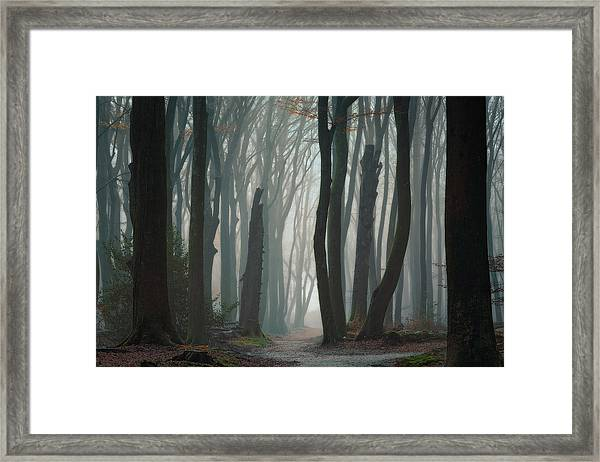 Follow Your Own Way Framed Print