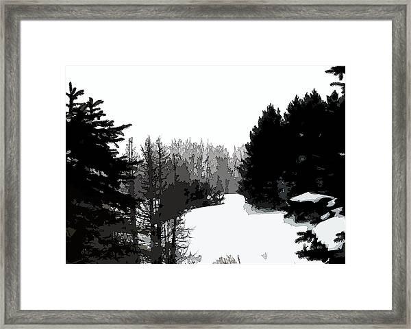 Forest Opening Framed Print