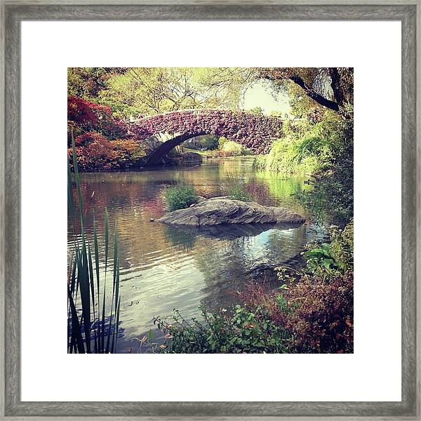 Gapstow Bridge In Central Park New York Framed Print