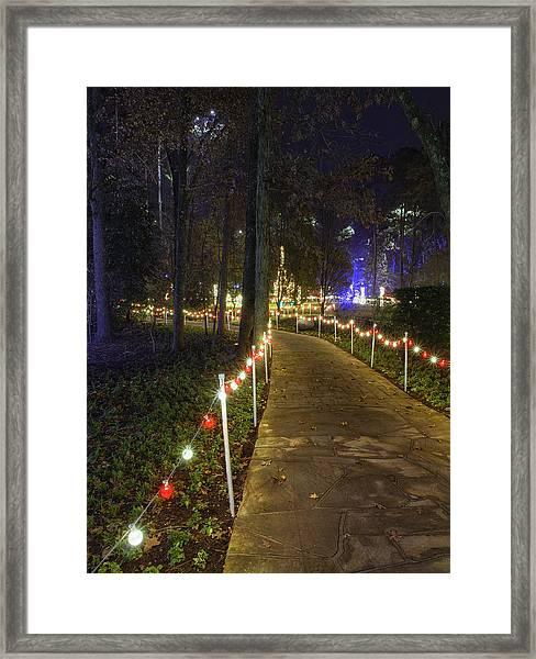 Long Path Framed Print