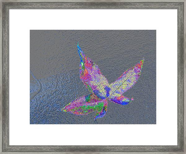 greetings - may i give U a hug Framed Print