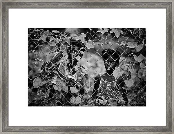Guina? Framed Print