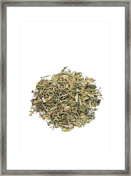 Heartease Herb Framed Print