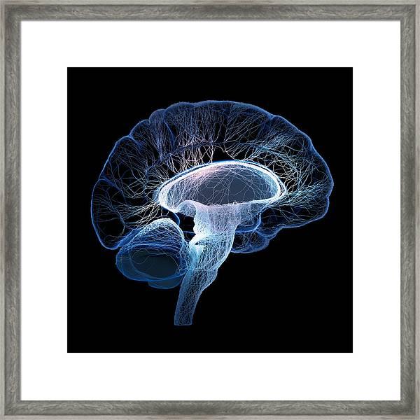 Human Brain Complexity Framed Print