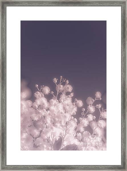 Infrared Nature Bloom Framed Print