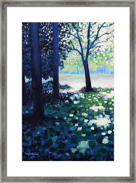 Into The Light    Cropped Version Framed Print