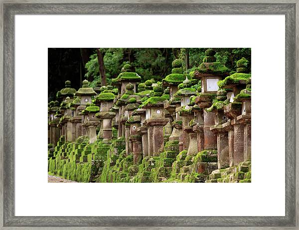Kasuga-taisha Shrine In Nara, Japan Framed Print by Paul Dymond