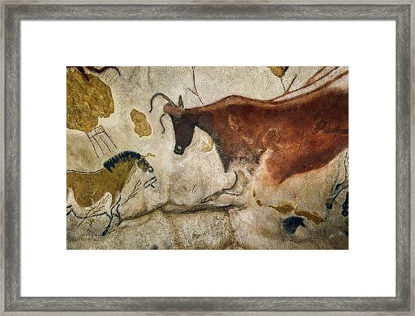 Lascaux II Cave Painting Replica Framed Print