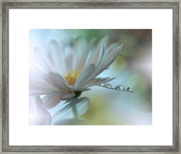 Light Touch... Framed Print by Juliana Nan