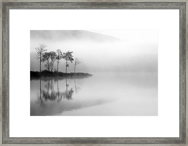 Loch Ard Trees In The Mist Framed Print