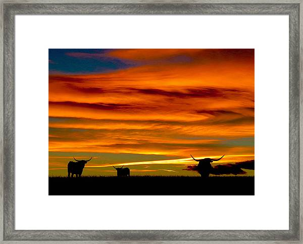 Longhorn Sunset Framed Print