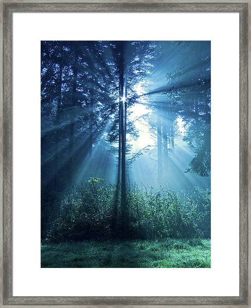 Magical Light Framed Print