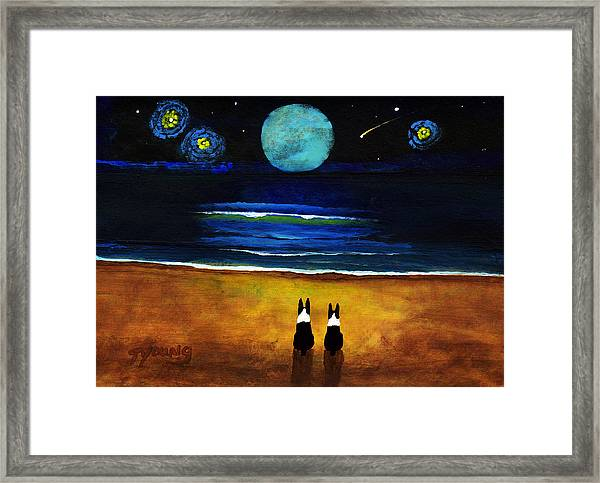 Magical Night Framed Print by Todd Young