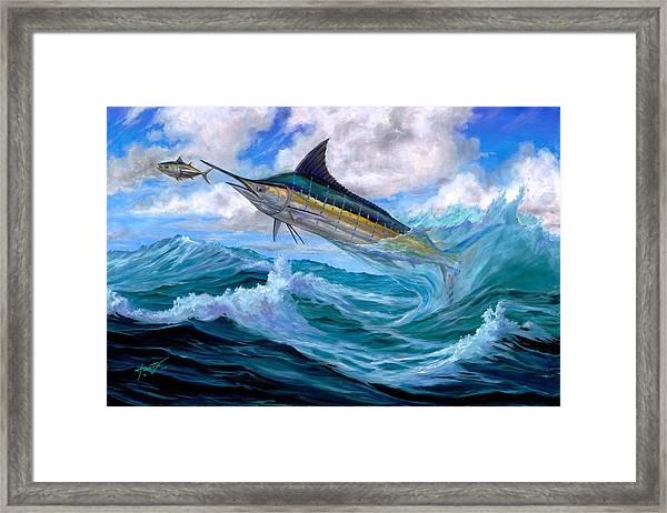 Marlin Low-flying Framed Print