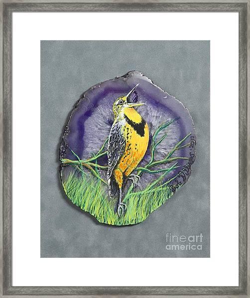 Meadow Soloist I Framed Print