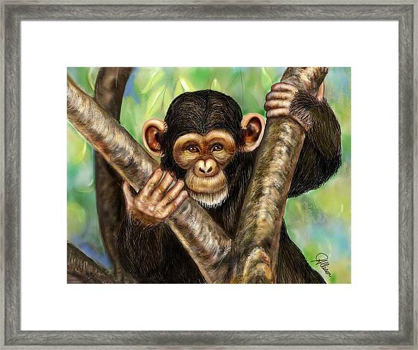 Mischievous Monkey Framed Print