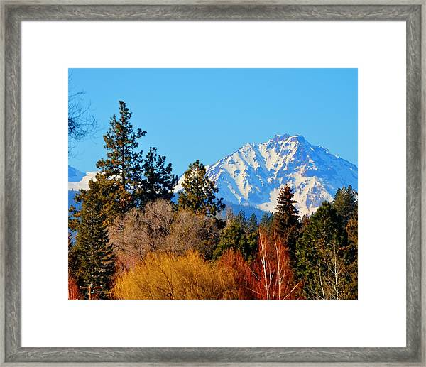 Mt Bachelor 21620 Framed Print